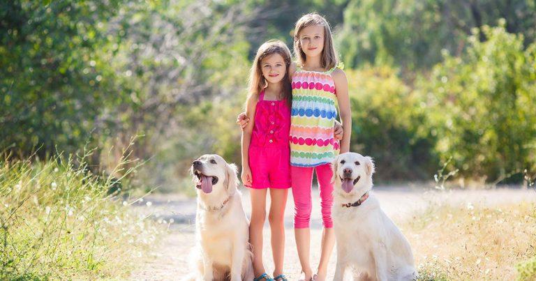 ילדים וכלבים